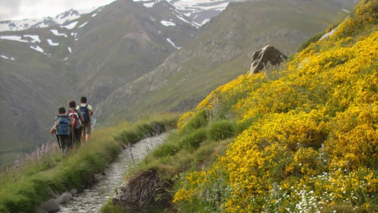 Recomendaciones para salir al campo con jóvenes naturalistas