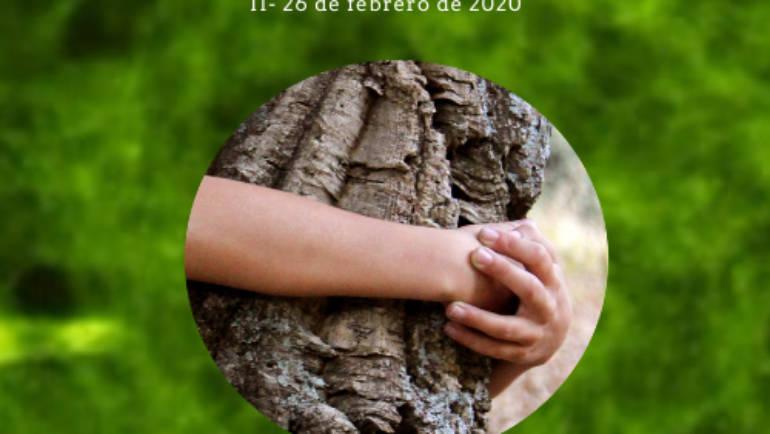 Curso: Neuro-Educación Ambiental. Estrategias didácticas para fomentar el vínculo afectivo con la naturaleza (Universidad de Sevilla)