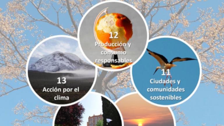 Taller de reconexión con la naturaleza el VI Congreso Internacional de Educación Ambiental